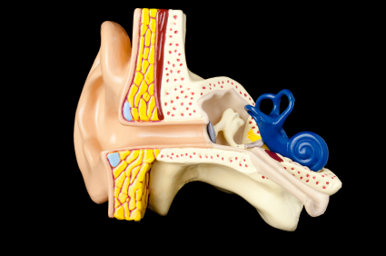 Swimmers ear is painful if not dealt with for What causes ear infections from swimming pools